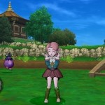 Dragon Quest X Elfos 29-06 01