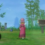 Dragon Quest X Elfos 29-06 03