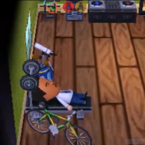 1306-21 Animal Crossing New Leaf Casa Reggie