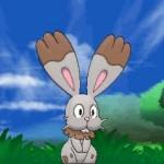 1308-09 Pokémon X-Y Bunnelby 01