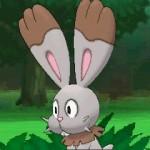 1308-09 Pokémon X-Y Bunnelby 02