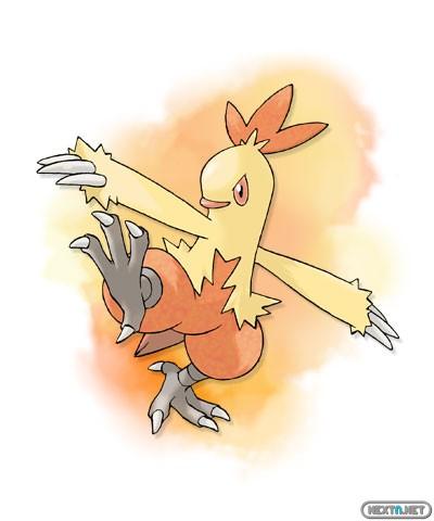 1308-09 Pokémon X-Y Combusken