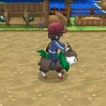 1308-09 Pokémon X-Y Skiddo 04