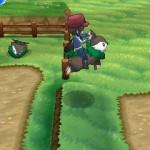 1308-09 Pokémon X-Y Skiddo 05