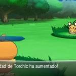 1308-09 Pokémon X-Y Torchic 04