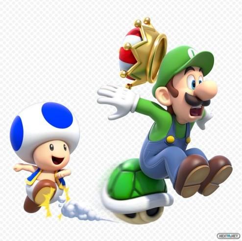 1310-25 Super Mario 3D World 28