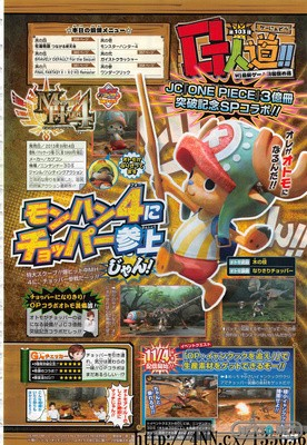 1310-29 Monster Hunter 4 One Piece