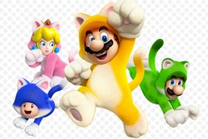 1311-08 Super Mario 3D World 09