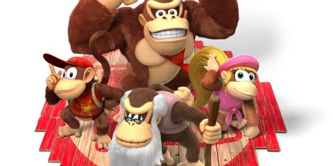 1312-18 Donkey Kong Tropical Freeze 17