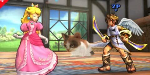 1407-17 Smash Bros. Nintendogs