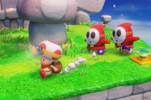 1408-16 Captain Toad 04