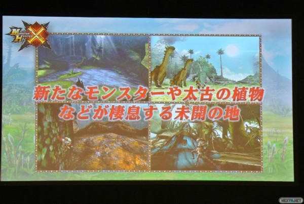 1506-01 Monster Hunter X 3DS 003