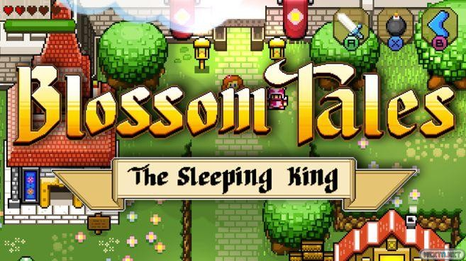 Blossom Tales The Sleeping King Switch