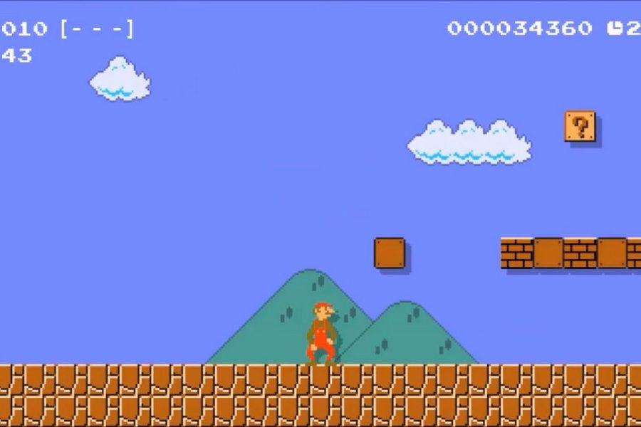 Super Mario Maker 2 Mario Flaco
